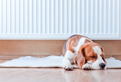 Auditoría energética calefacción en hogares