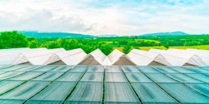 Eficiencia energetica invernadero